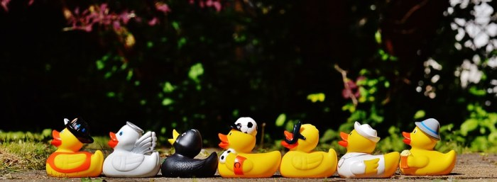 rubber-ducks-1408285__340